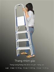 Thang nhôm tay vịn